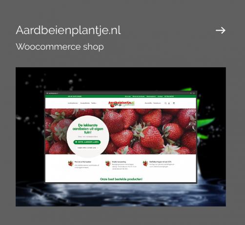 aardbeienplantje mockup 3